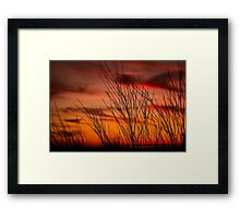 Orange sky with branches Framed Print