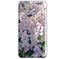 Clematis Flowerfall E iPhone Case/Skin