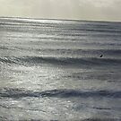single surfer by brucemlong
