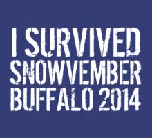 Awesome 'I survived Snowvember Buffalo 2014' Snowstorm T-Shirt and Accessories by Albany Retro
