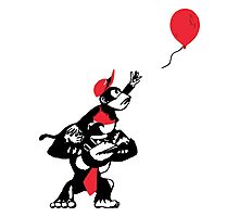 Balloon Apes Photographic Print