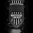 BOSS 302 Engine by snuggles