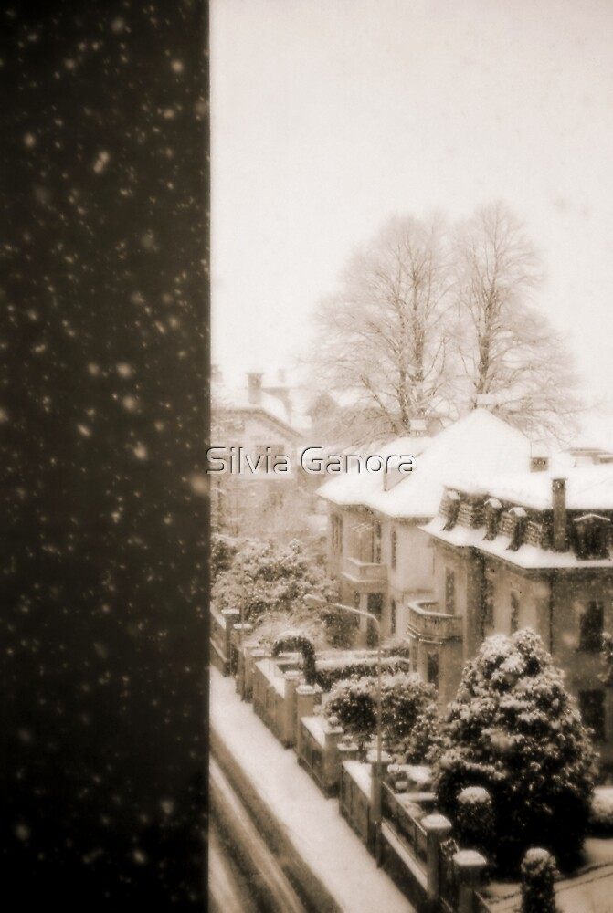 Snowy afternoon by Silvia Ganora