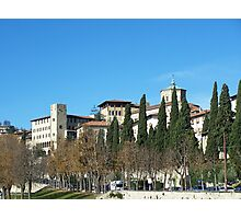 Bergamo tree-lined avenue Photographic Print