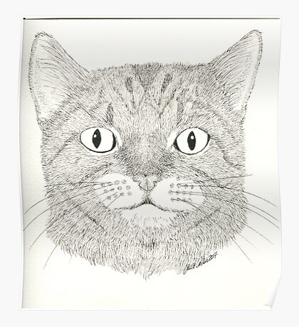 Large eyed cat Pen and Ink Poster