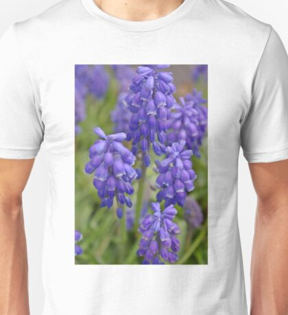 Grape Hyacinths A Unisex T-Shirt