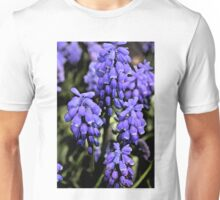 Grape Hyacinths B Unisex T-Shirt