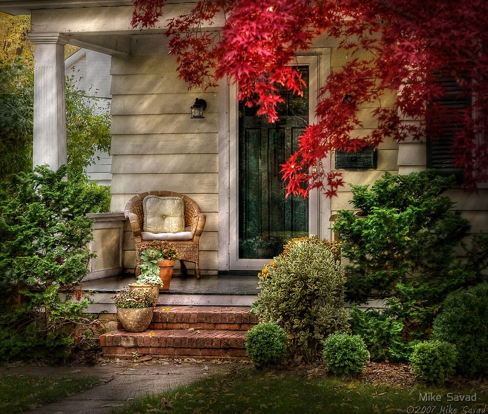 A chair and some flowers by Mike  Savad