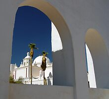 Mission San Xavier by Terry Shumaker