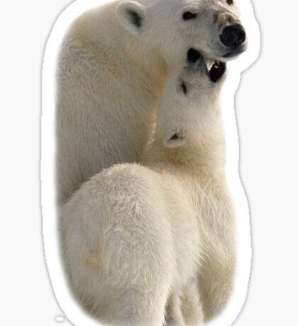 Polar Love - T-Shirt Sticker