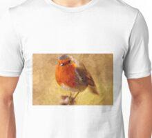 Artwork - Robin Red Breast Unisex T-Shirt