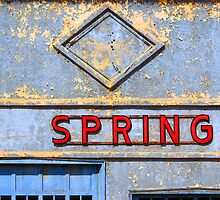 Spring by Robert Meyer