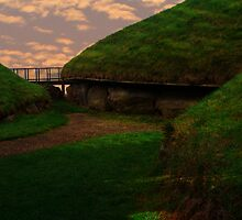 Knowth Passage Tombs - County Meath by Susan Isabella  Sheehan