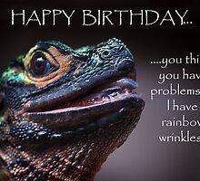 Happy birthday wrinkles by Sue Wilson (Kane)