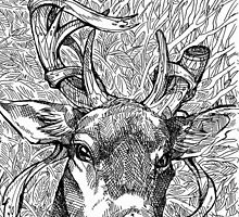 The Deer Prince by WOLFSKULLJACK