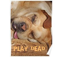 Play Dead... Poster