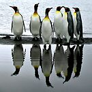 Reflecting Kings by Doug Thost