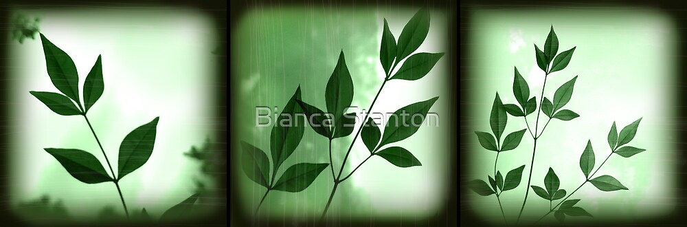 Leaf Green combo by Bianca Stanton