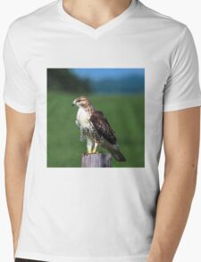 Red-Tailed Hawk stare down Mens V-Neck T-Shirt