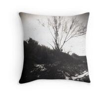 Animas River Pinhole Throw Pillow