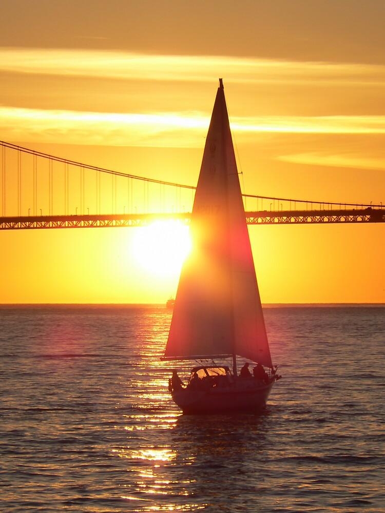 Setting Sail by Rowan Kanagarajah