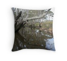 River Reflections III Throw Pillow