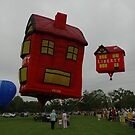 Hot Houses @ Parramatta Park - Australia Day by muz2142