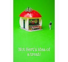 Not Bert's idea of a treat! Photographic Print