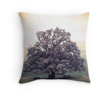 Grand Illusion Throw Pillow
