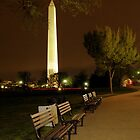 Night Time In Washington, DC by Bridges