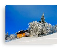 Wintertime, and the livin' ain't easy  Canvas Print