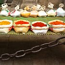 colorful spices by dominiquelandau