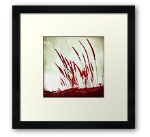 Morning Glow red Framed Print