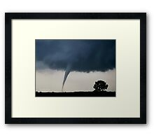 The Tornado and the Tree Framed Print