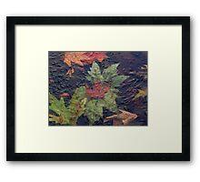Frozen autumn Framed Print