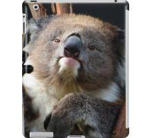 Koala 1 iPad Case/Skin