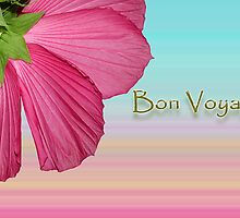Bon Voyage by Bonnie T.  Barry