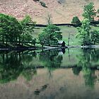 Boatshed near Howtown from boat Pooley Bridge to Glenridding and return on Ullswater Lake District England 198405230024  by Fred Mitchell