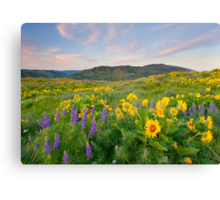 Meadow of Spring Canvas Print