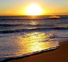 Cape Hatteras Sunrise by Alberto  DeJesus