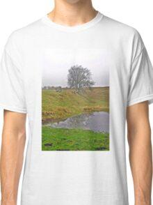 Avebury Pond Reflection A Classic T-Shirt