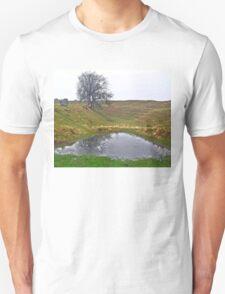 Avebury Pond Reflection D Unisex T-Shirt