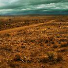 Desert Storm by Estevan Montoya