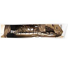 Maheno Shipwreck Panorama Poster