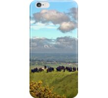 Crowded Hill iPhone Case/Skin