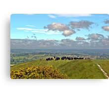 Crowded Hill Canvas Print