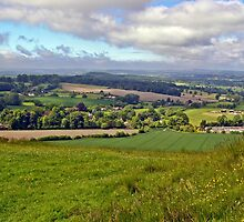 Wiltshire Countryside by VikingVisual