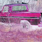 Ford Ranger.  by Cheyenne