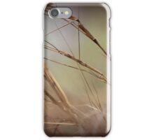 Crimson Finches iPhone Case/Skin