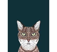 Sidney - Tabby Cat art print cell phone case with cute cat funny cat gifts perfect gift for cat lady Photographic Print